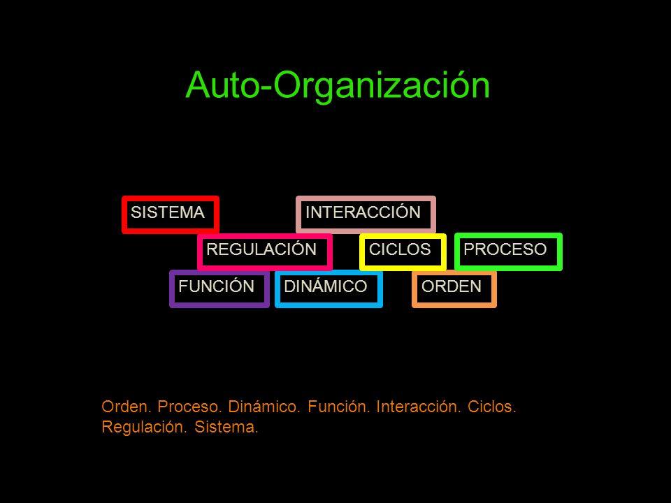 Auto-Organización SISTEMA INTERACCIÓN REGULACIÓN CICLOS PROCESO
