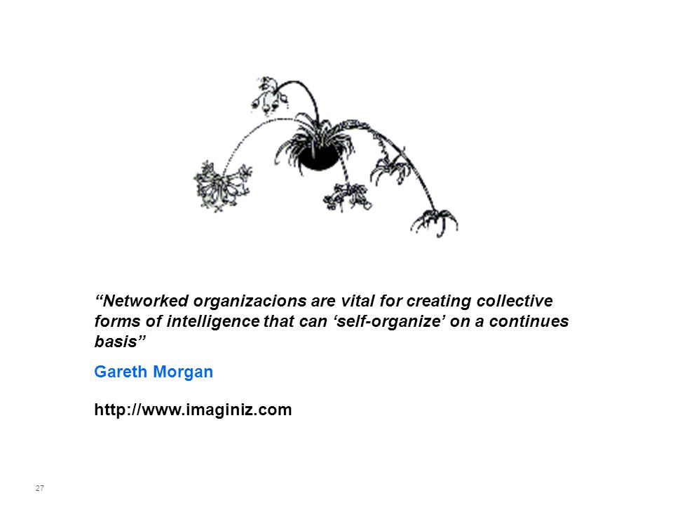 Networked organizacions are vital for creating collective forms of intelligence that can 'self-organize' on a continues basis