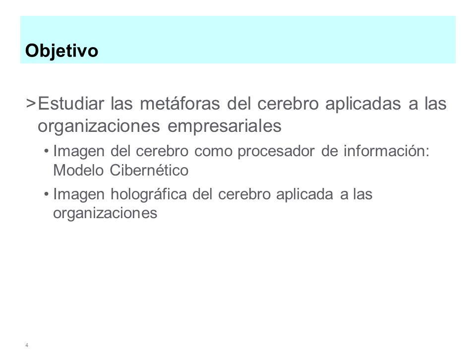 Objetivo Estudiar las metáforas del cerebro aplicadas a las organizaciones empresariales.