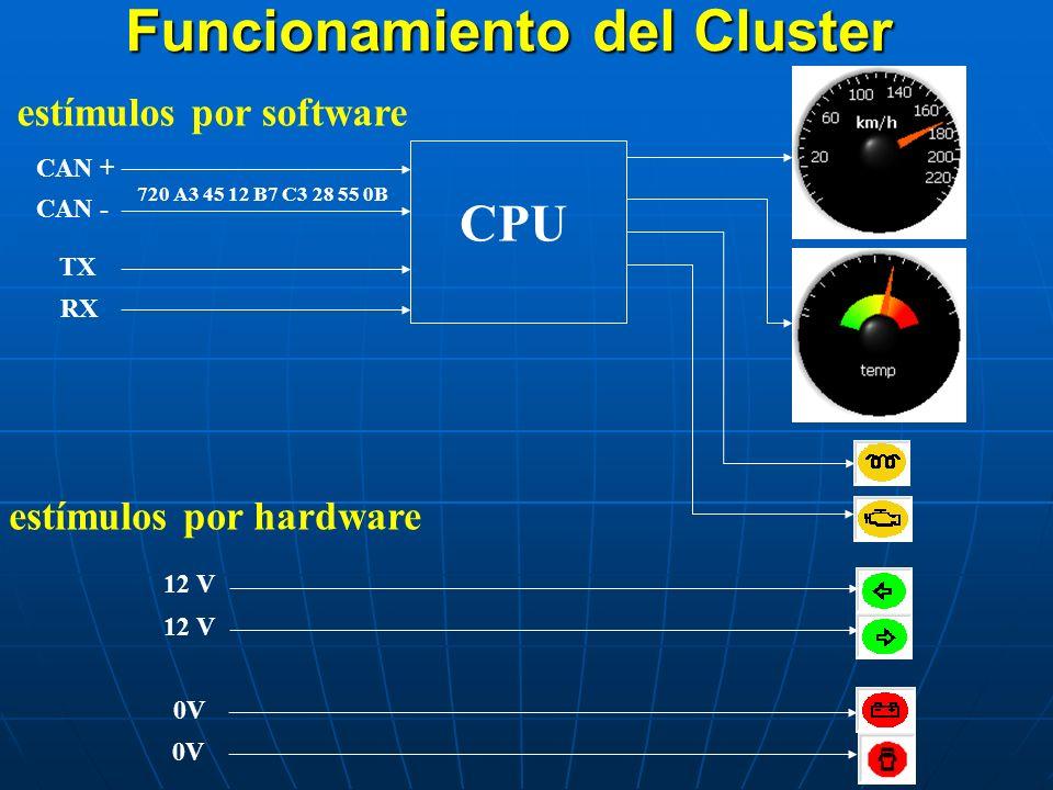 Funcionamiento del Cluster