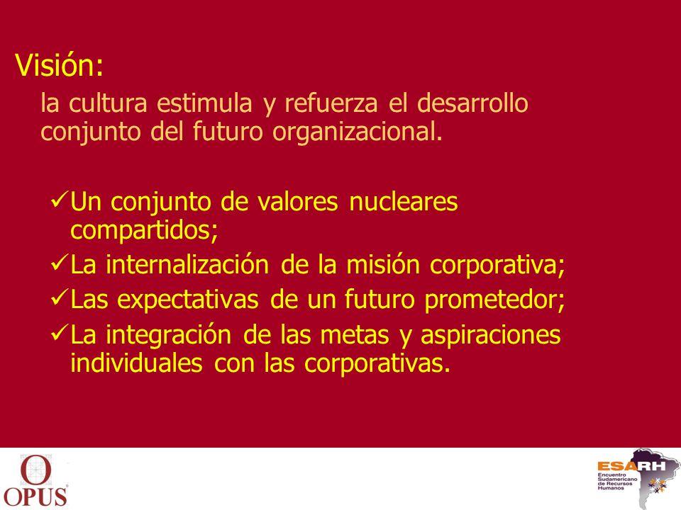 Visión: la cultura estimula y refuerza el desarrollo conjunto del futuro organizacional. Un conjunto de valores nucleares compartidos;