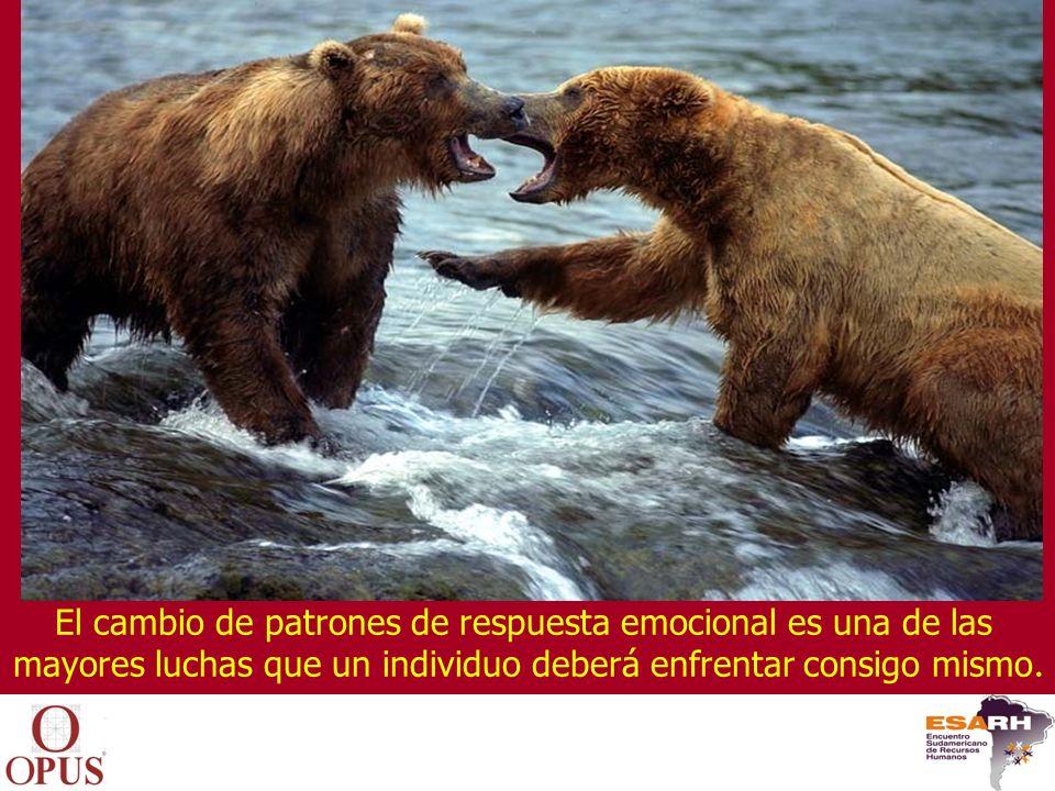El cambio de patrones de respuesta emocional es una de las