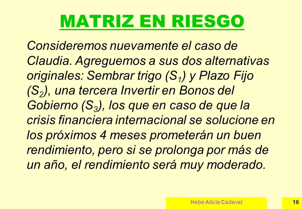 MATRIZ EN RIESGO