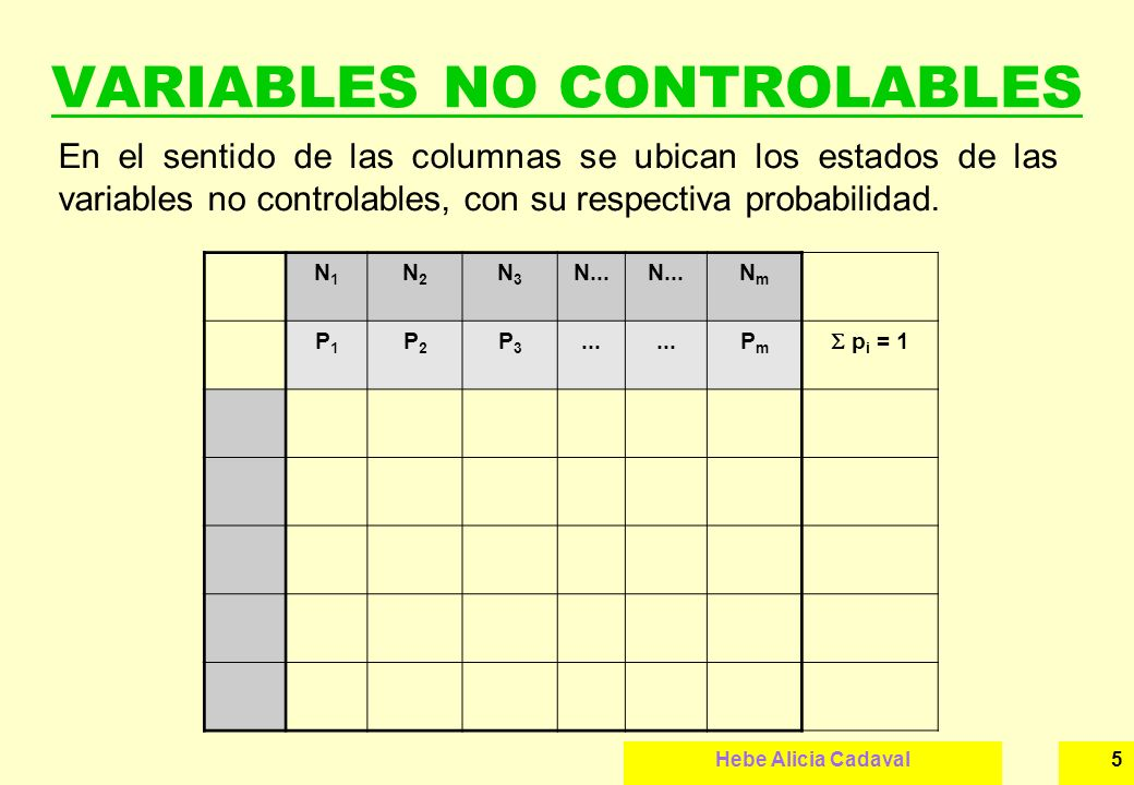 VARIABLES NO CONTROLABLES