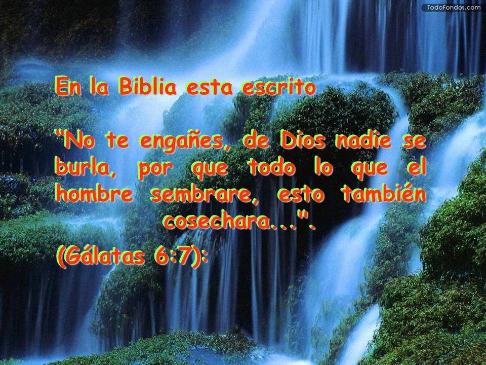 En la Biblia esta escrito