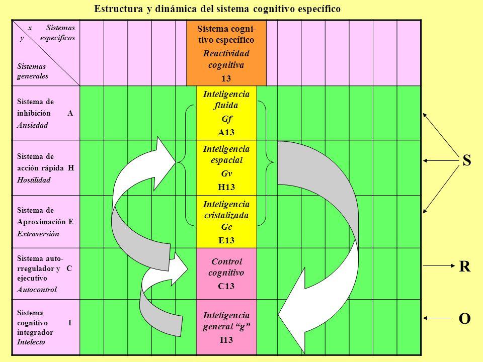 Estructura y dinámica del sistema cognitivo específico