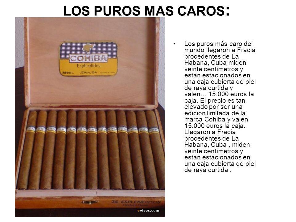 LOS PUROS MAS CAROS: