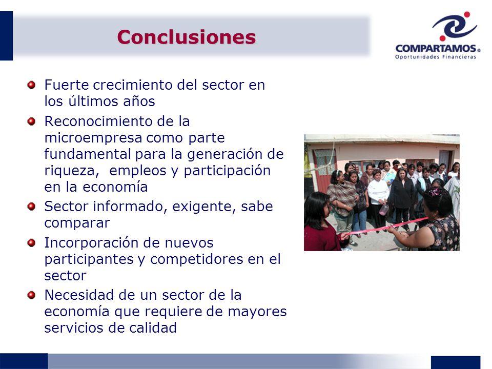 Conclusiones Fuerte crecimiento del sector en los últimos años