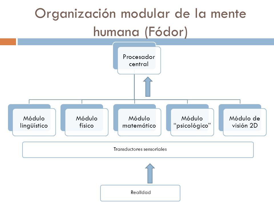 Organización modular de la mente humana (Fódor)