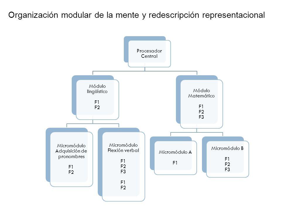 Organización modular de la mente y redescripción representacional