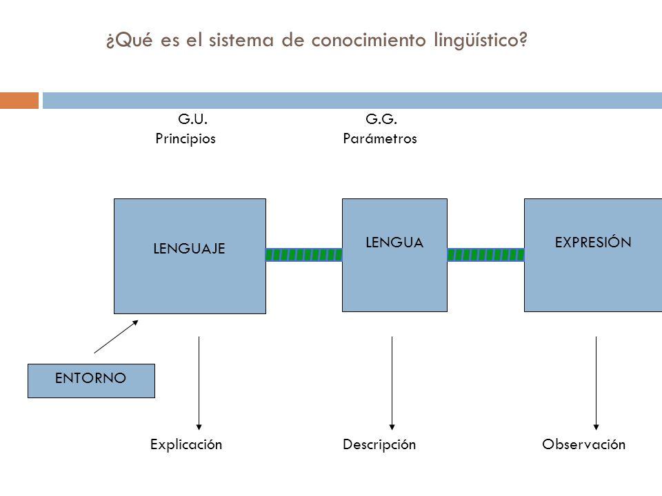 ¿Qué es el sistema de conocimiento lingüístico