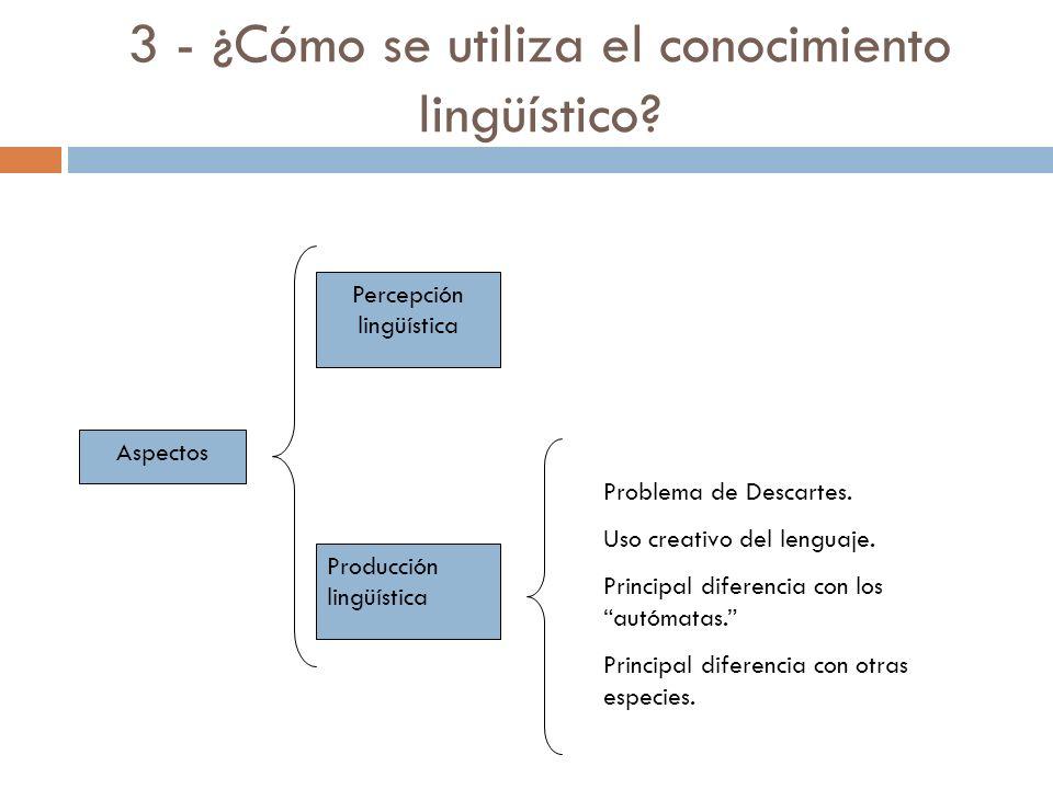3 - ¿Cómo se utiliza el conocimiento lingüístico