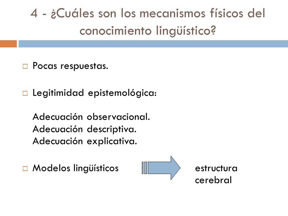4 - ¿Cuáles son los mecanismos físicos del conocimiento lingüístico