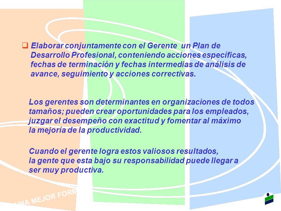 Elaborar conjuntamente con el Gerente un Plan de