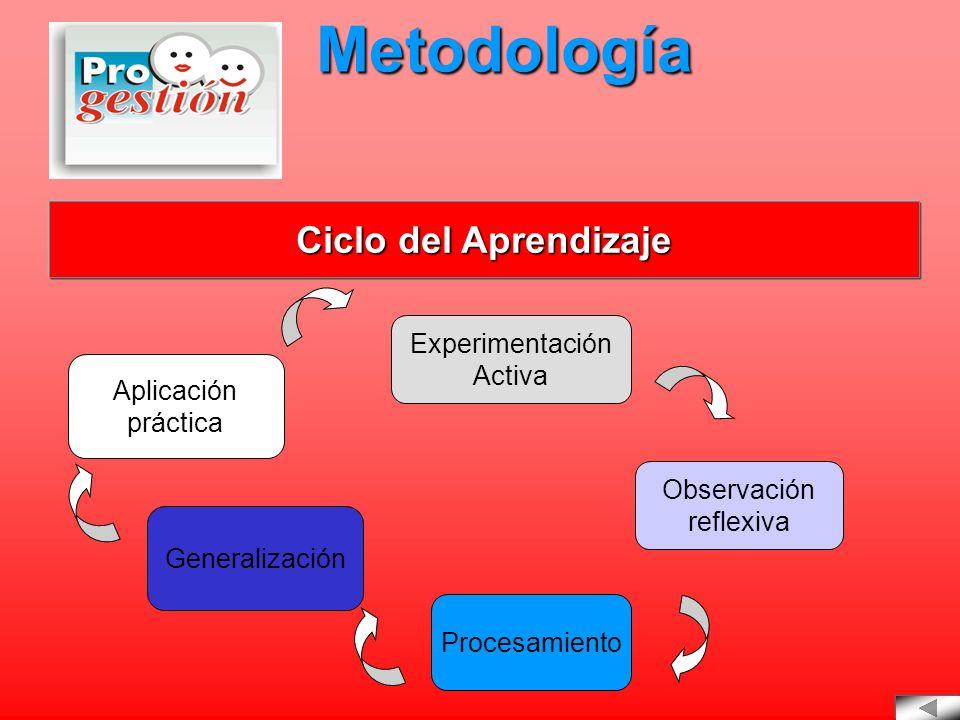 Metodología Ciclo del Aprendizaje Experimentación Activa Aplicación