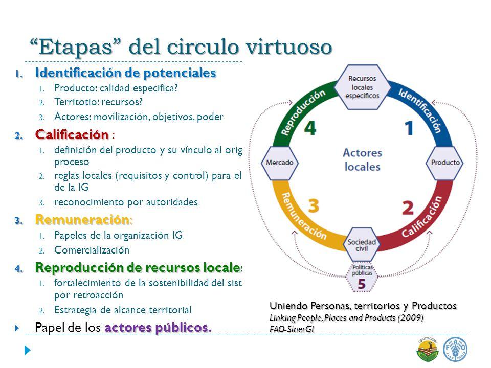 Etapas del circulo virtuoso