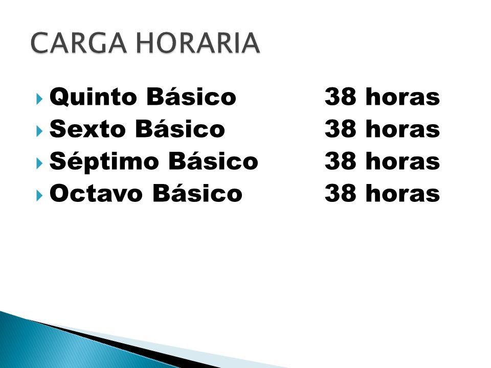 CARGA HORARIA Quinto Básico 38 horas Sexto Básico 38 horas
