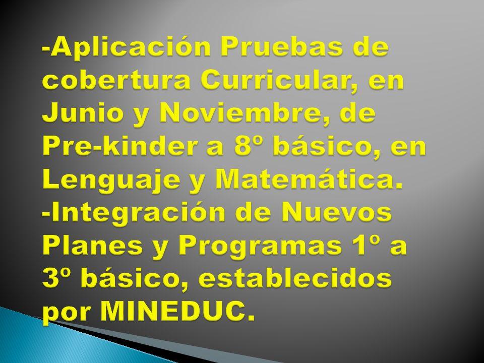 -Aplicación Pruebas de cobertura Curricular, en Junio y Noviembre, de Pre-kinder a 8º básico, en Lenguaje y Matemática.
