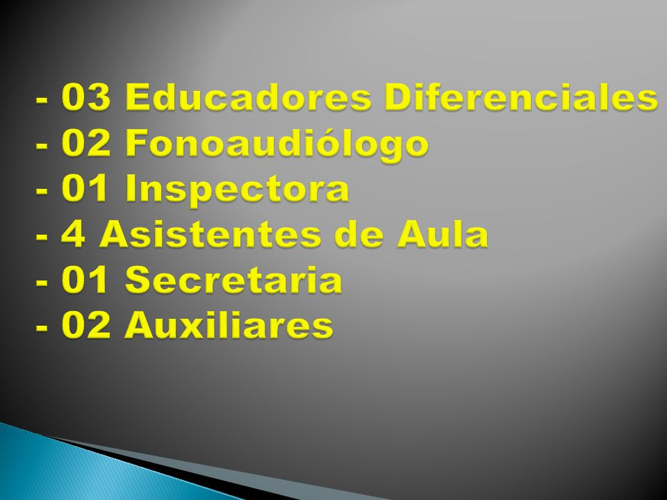 - 03 Educadores Diferenciales - 02 Fonoaudiólogo - 01 Inspectora - 4 Asistentes de Aula - 01 Secretaria - 02 Auxiliares