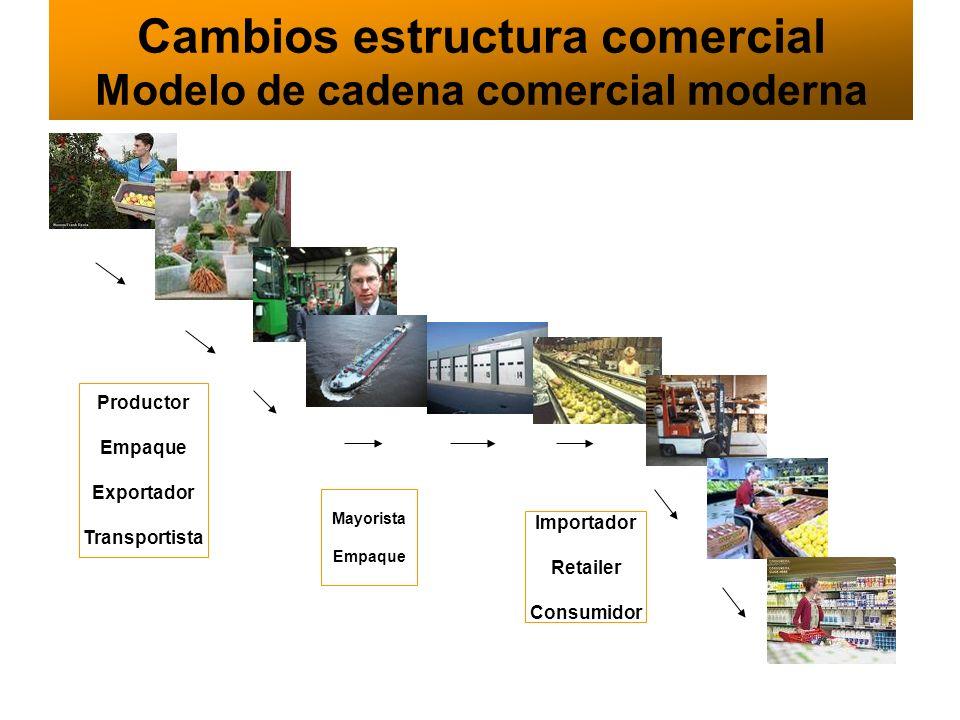 Cambios estructura comercial Modelo de cadena comercial moderna
