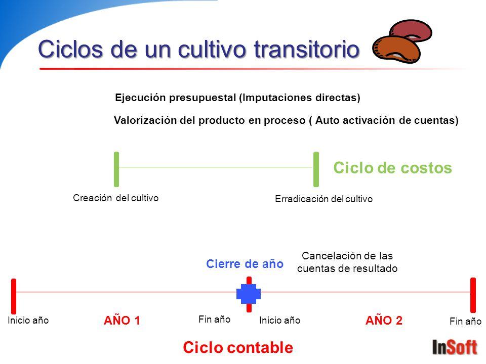 Ciclos de un cultivo transitorio
