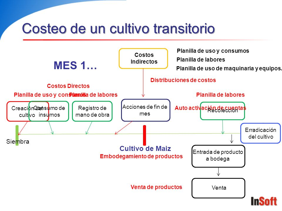 Costeo de un cultivo transitorio