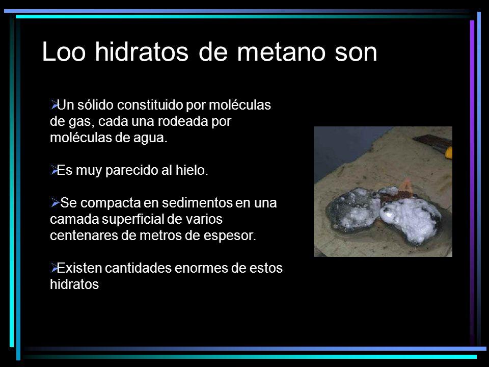 Loo hidratos de metano son