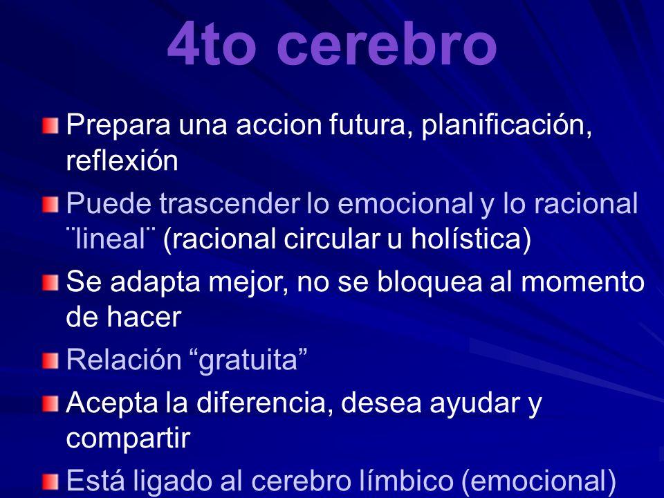 4to cerebro Prepara una accion futura, planificación, reflexión