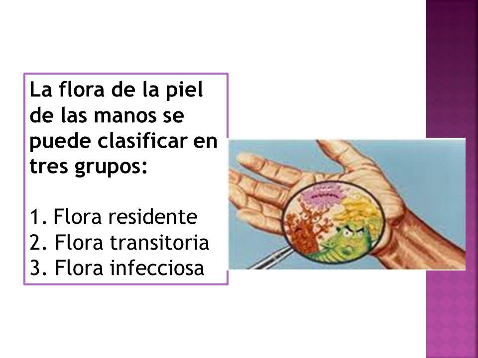 La flora de la piel de las manos se puede clasificar en tres grupos: