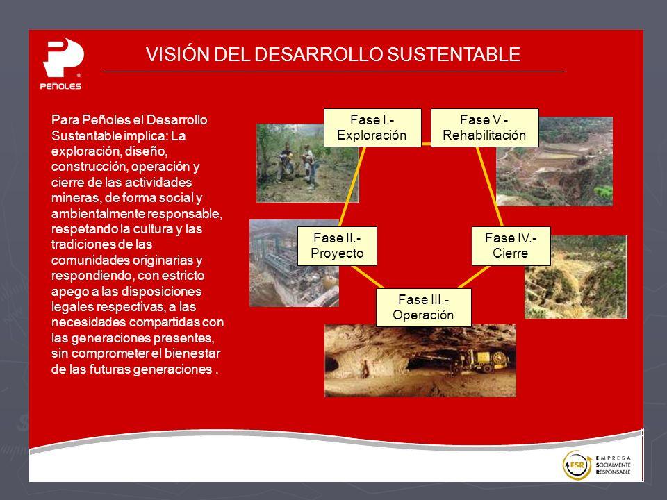 VISIÓN DEL DESARROLLO SUSTENTABLE