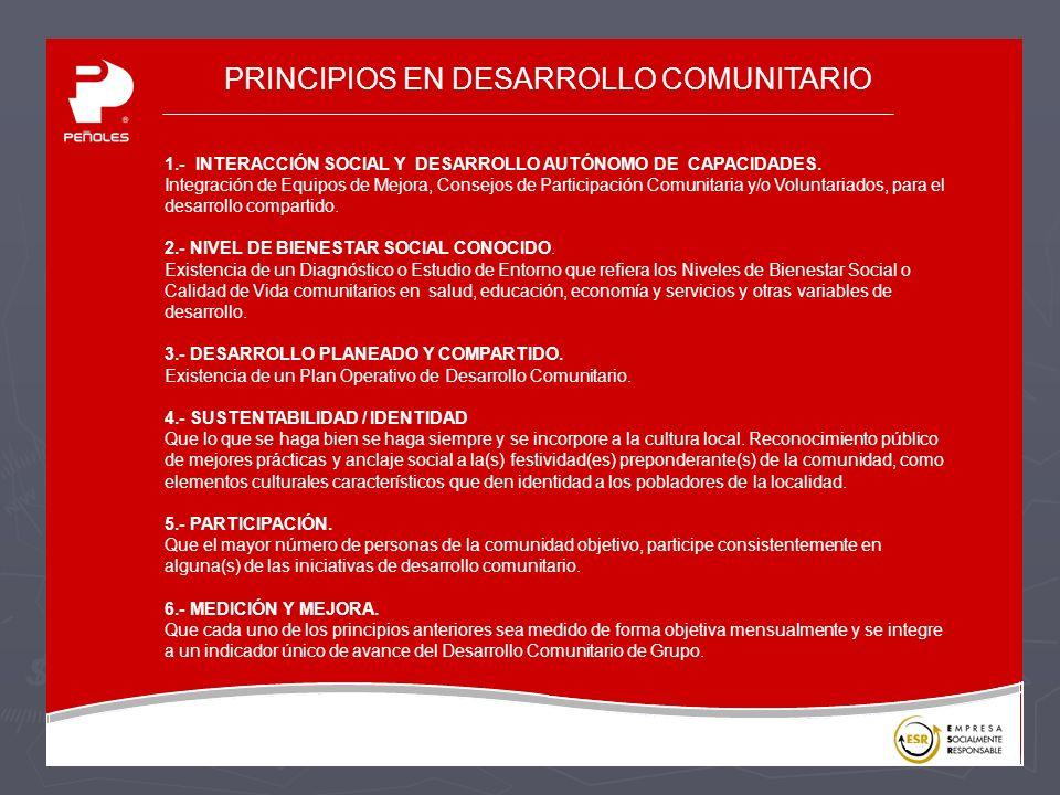 PRINCIPIOS EN DESARROLLO COMUNITARIO