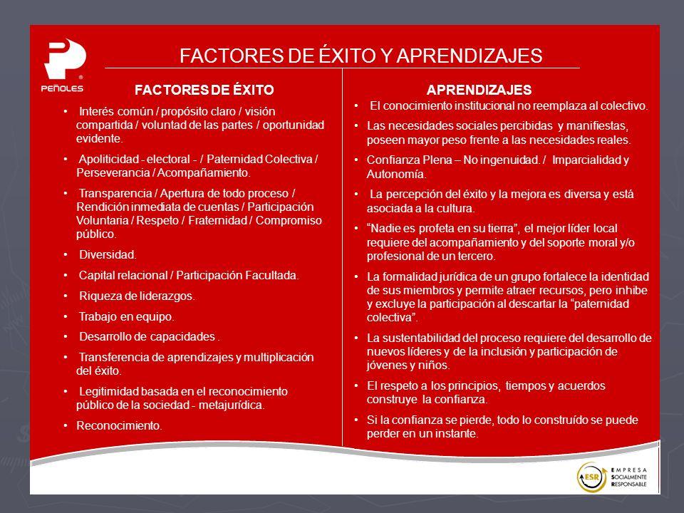 FACTORES DE ÉXITO Y APRENDIZAJES