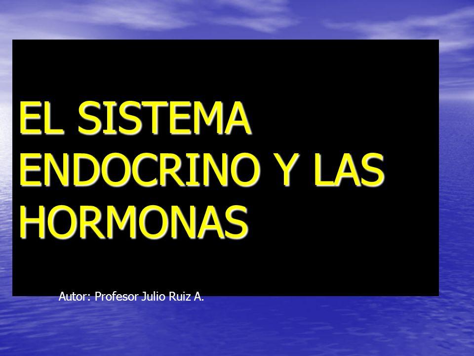 EL SISTEMA ENDOCRINO Y LAS HORMONAS