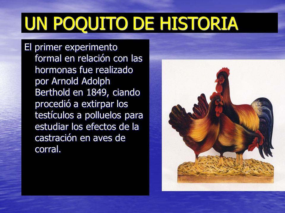 UN POQUITO DE HISTORIA