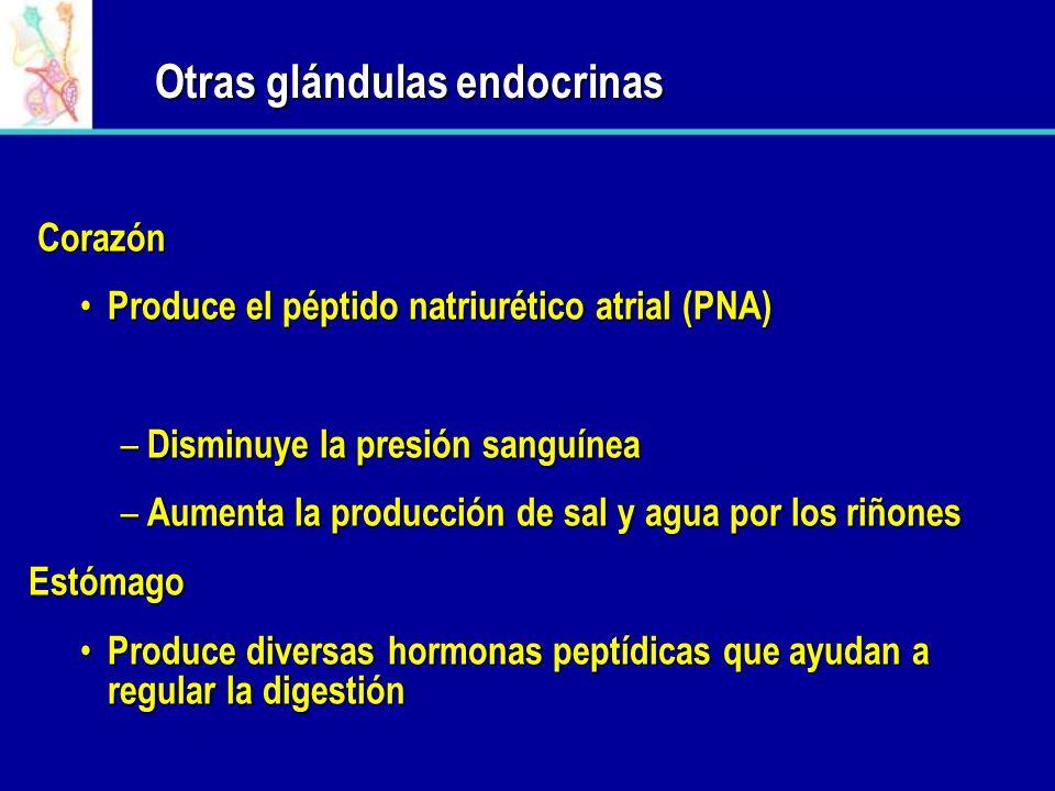Otras glándulas endocrinas