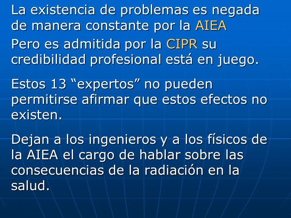 La existencia de problemas es negada de manera constante por la AIEA