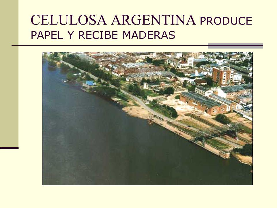 CELULOSA ARGENTINA PRODUCE PAPEL Y RECIBE MADERAS