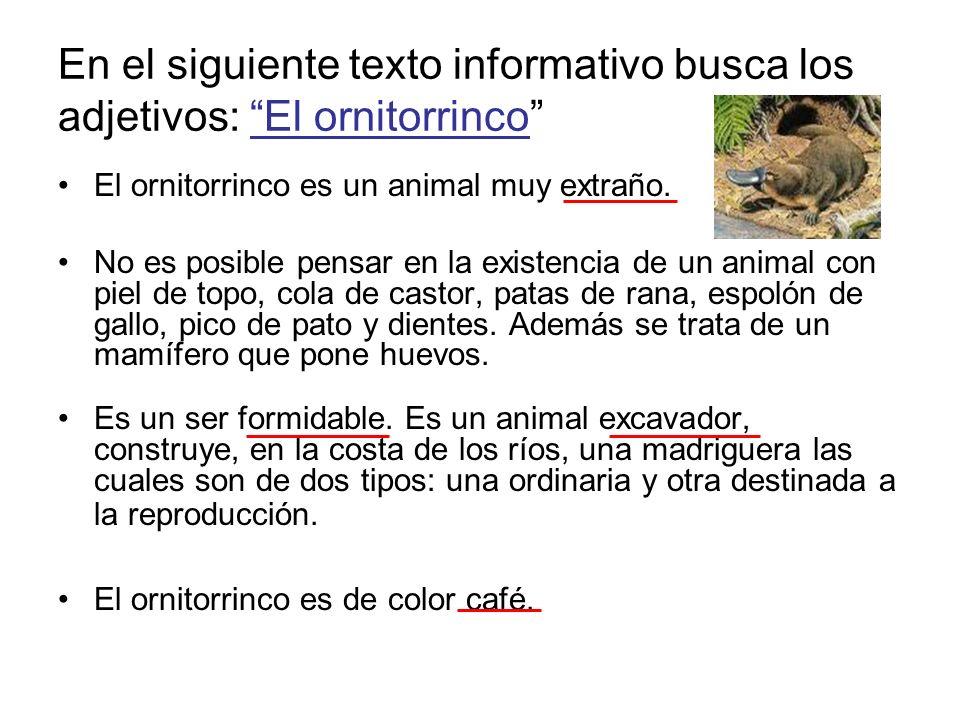 En el siguiente texto informativo busca los adjetivos: El ornitorrinco