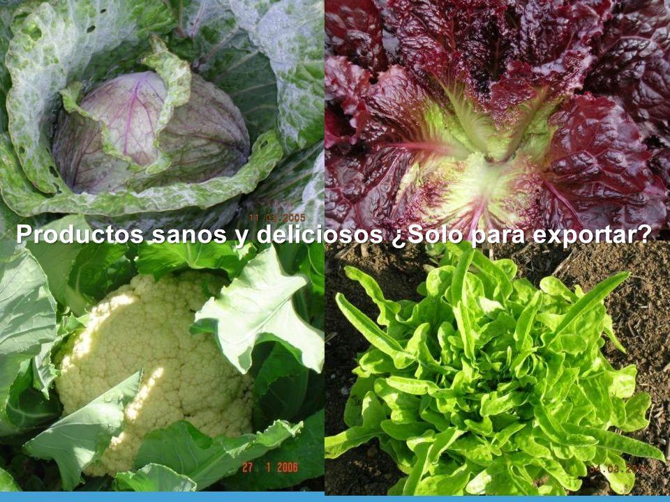 Productos sanos y deliciosos ¿Solo para exportar