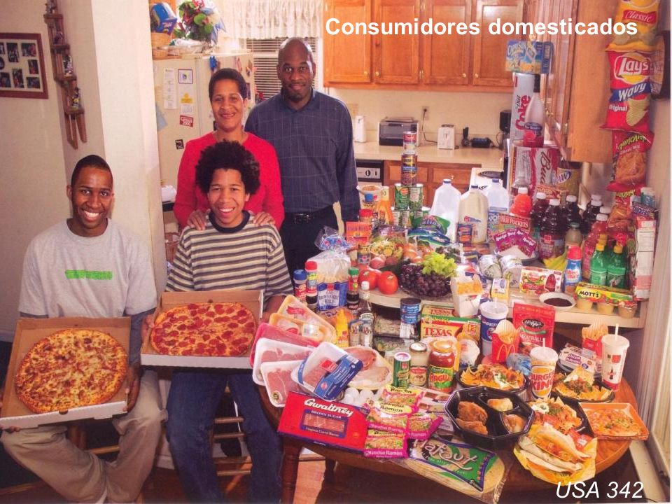 Consumidores domesticados