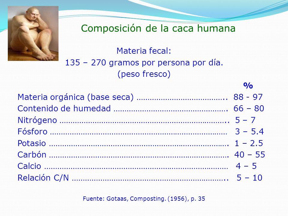 Composición de la caca humana