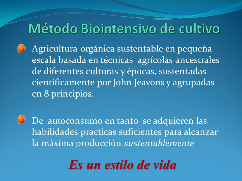 Método Biointensivo de cultivo