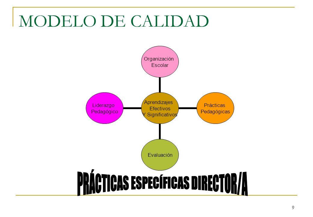 PRÁCTICAS ESPECÍFICAS DIRECTOR/A