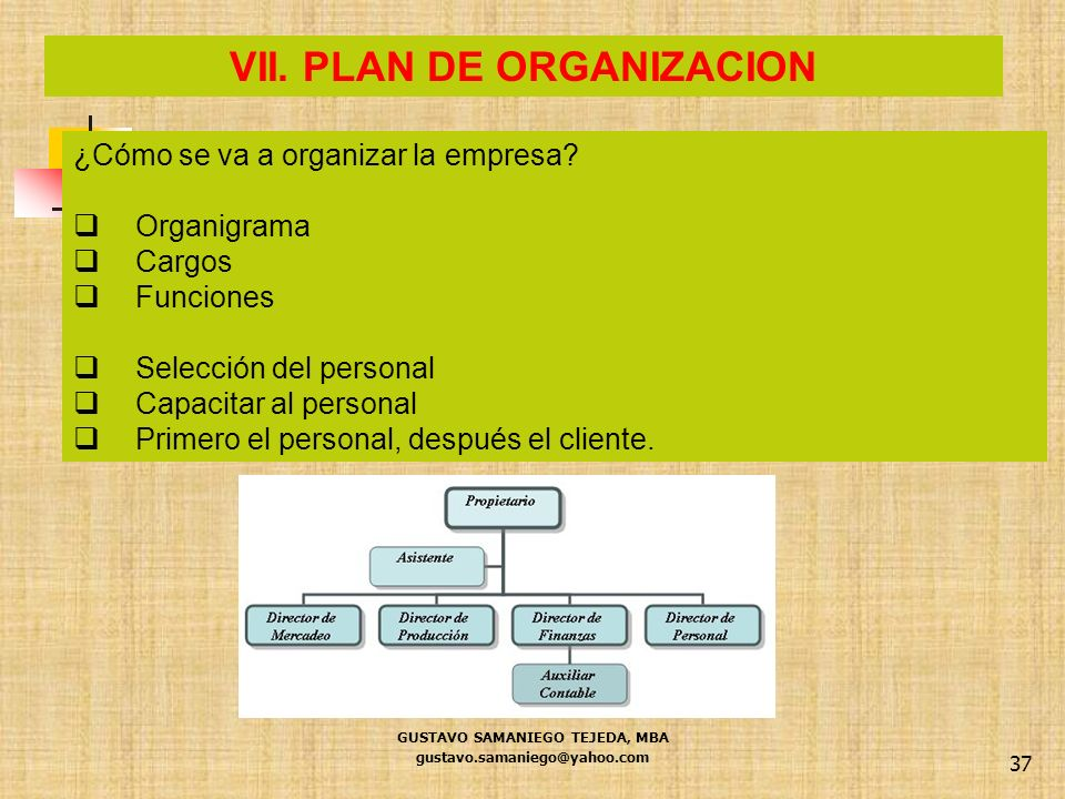 VII. PLAN DE ORGANIZACION GUSTAVO SAMANIEGO TEJEDA, MBA