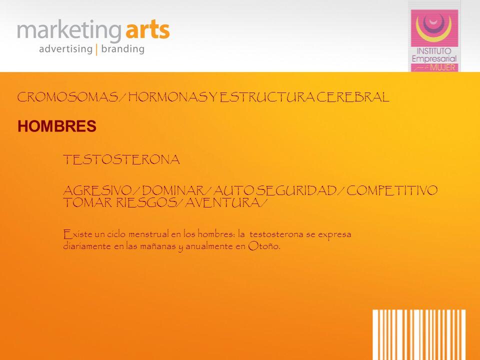 HOMBRES CROMOSOMAS / HORMONAS Y ESTRUCTURA CEREBRAL TESTOSTERONA