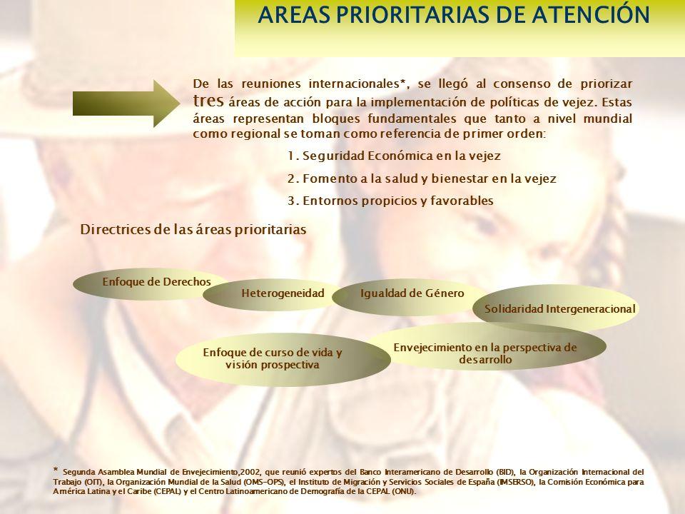 AREAS PRIORITARIAS DE ATENCIÓN