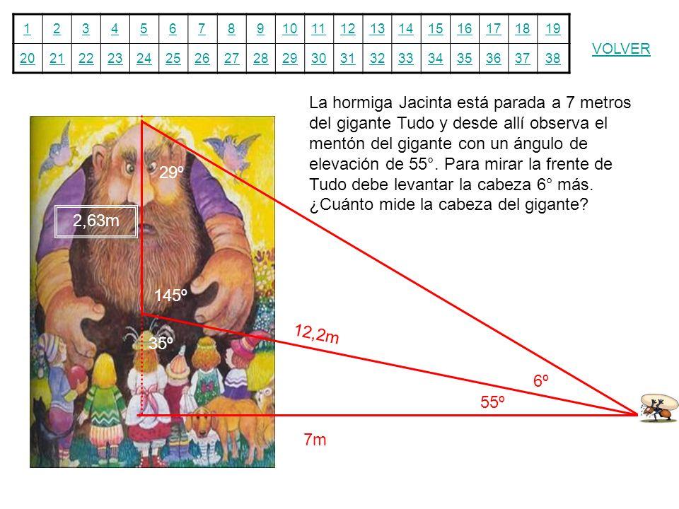 La hormiga Jacinta está parada a 7 metros del gigante Tudo y desde allí observa el mentón del gigante con un ángulo de elevación de 55°. Para mirar la frente de Tudo debe levantar la cabeza 6° más. ¿Cuánto mide la cabeza del gigante