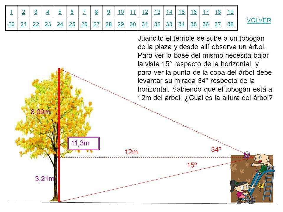 Juancito el terrible se sube a un tobogán de la plaza y desde allí observa un árbol. Para ver la base del mismo necesita bajar la vista 15° respecto de la horizontal, y para ver la punta de la copa del árbol debe levantar su mirada 34° respecto de la horizontal. Sabiendo que el tobogán está a 12m del árbol: ¿Cuál es la altura del árbol