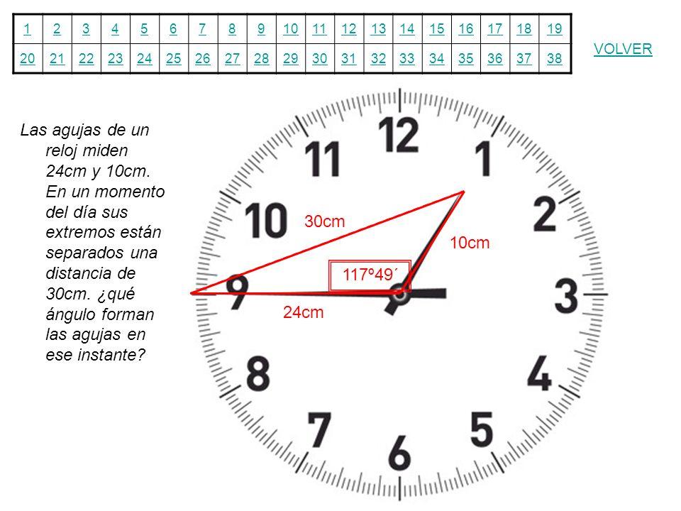 Las agujas de un reloj miden 24cm y 10cm