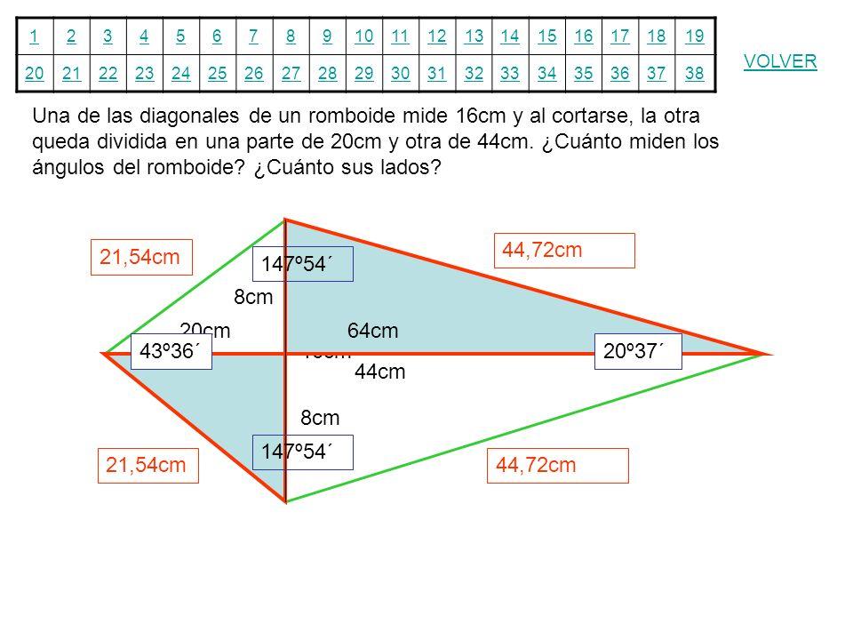Una de las diagonales de un romboide mide 16cm y al cortarse, la otra queda dividida en una parte de 20cm y otra de 44cm. ¿Cuánto miden los ángulos del romboide ¿Cuánto sus lados